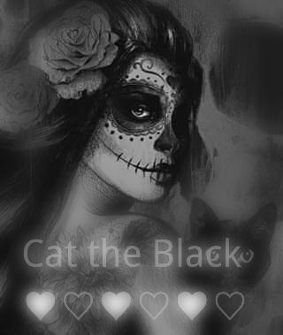 Fanfic / Fanfiction Cat the Black ♡ ♡