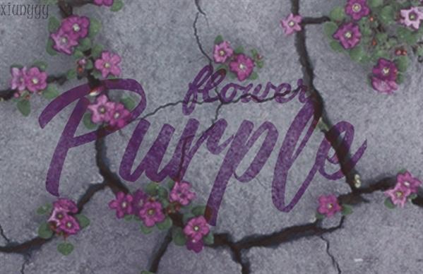 Fanfic / Fanfiction Flower Purple HIATUS