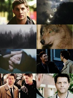 Fanfic / Fanfiction Friendly Wolf - Destiel