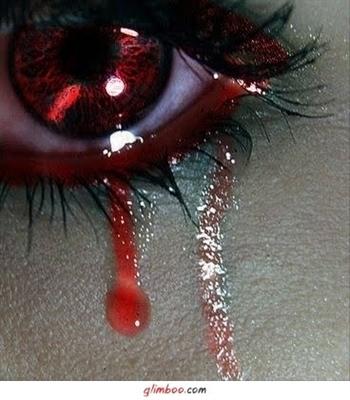Fanfic / Fanfiction Lágrimas de Amor pelas Gotas de Sangue