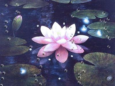 Fanfic / Fanfiction Pequena flor de lótus