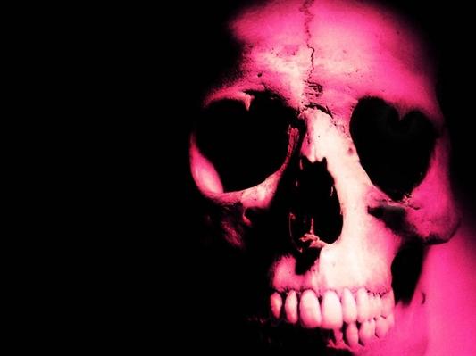 Fanfic / Fanfiction Pink Blood