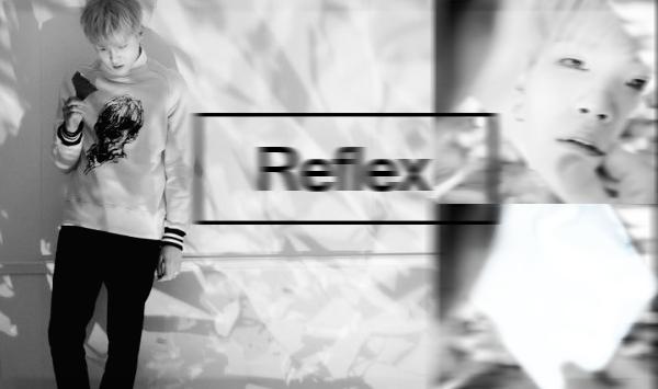 Fanfic / Fanfiction Reflex