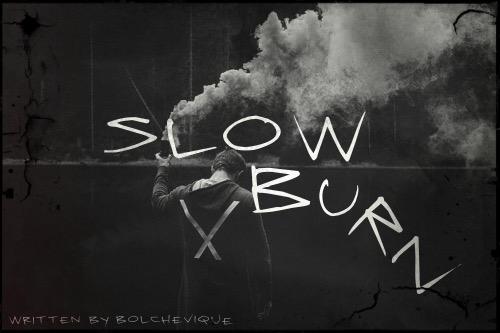 Fanfic / Fanfiction Slow Burn