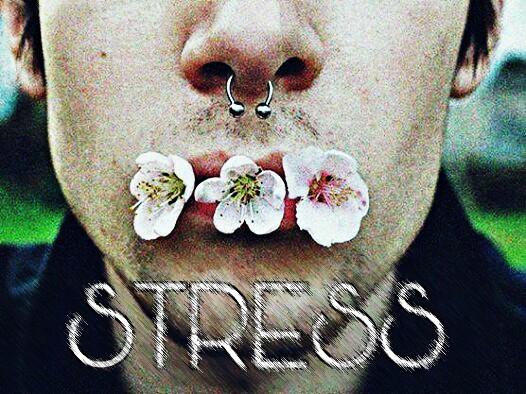 Fanfic / Fanfiction Stress