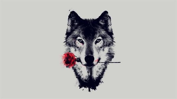 Fanfic / Fanfiction Uma historia de lobos e magia que eu chamo de moon wolves