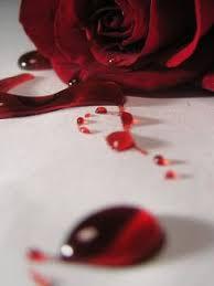 Fanfic / Fanfiction Uma Rosa para Mamãe