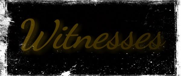 Fanfic / Fanfiction Witnesses