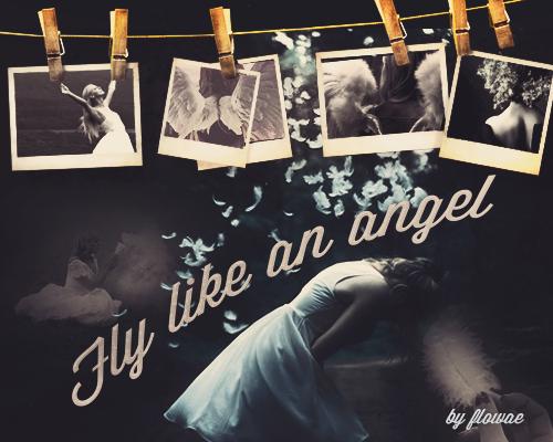Fanfic / Fanfiction Fly like an angel
