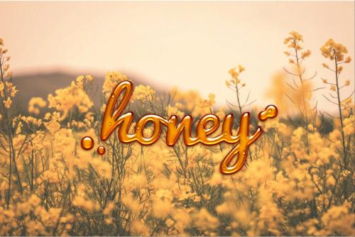 Fanfic / Fanfiction Honey