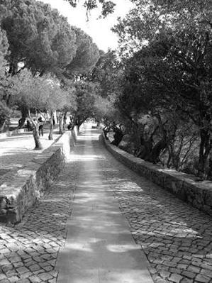 Fanfic / Fanfiction O jardim...