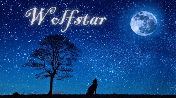 Fanfic / Fanfiction Wolfstar