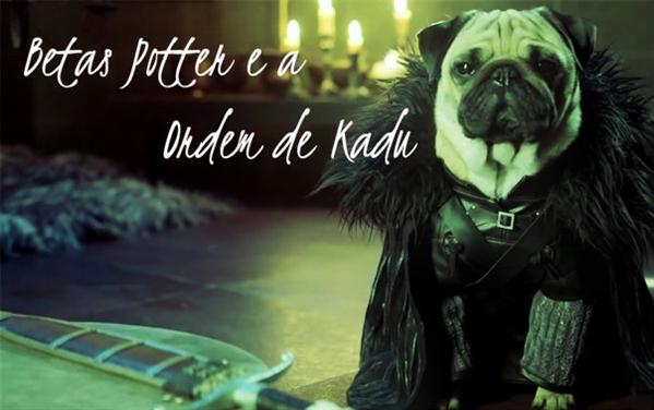 Fanfic / Fanfiction Betas Potter e a Ordem de Kadu