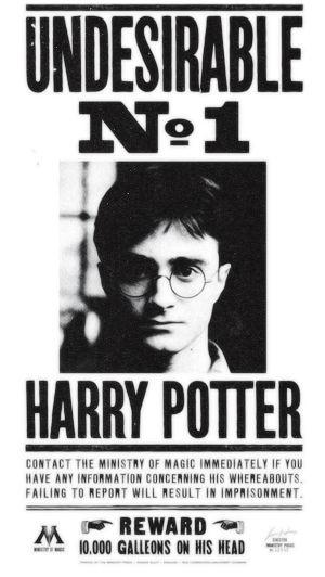 Fanfic / Fanfiction Harry Potter O Herdeiro de Grindelwald.