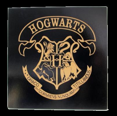 Fanfic / Fanfiction Hogwarts: Wizard of Tomorrow - Interativa