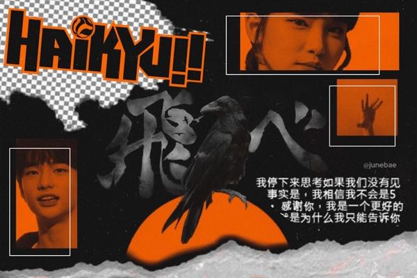 Fanfic / Fanfiction Haikyuu!! - Interativa