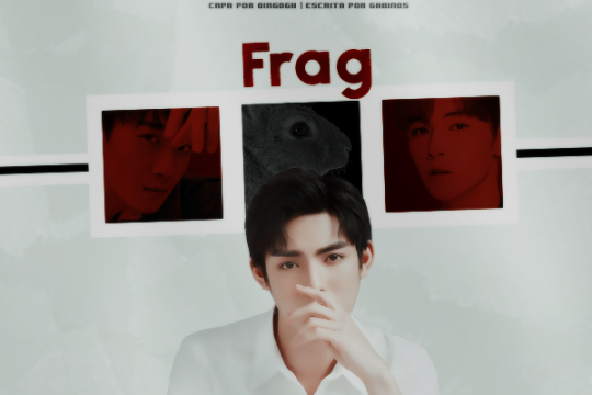 Fanfic / Fanfiction Frag
