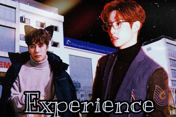 Fanfic / Fanfiction Experience (Markson) Hibrido