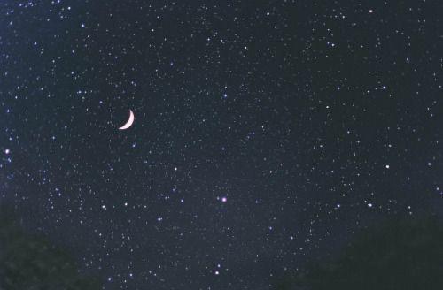 Fanfic / Fanfiction The Moon! • henyang