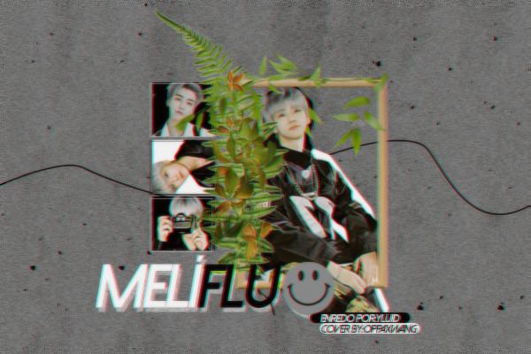 Fanfic / Fanfiction Melífluo