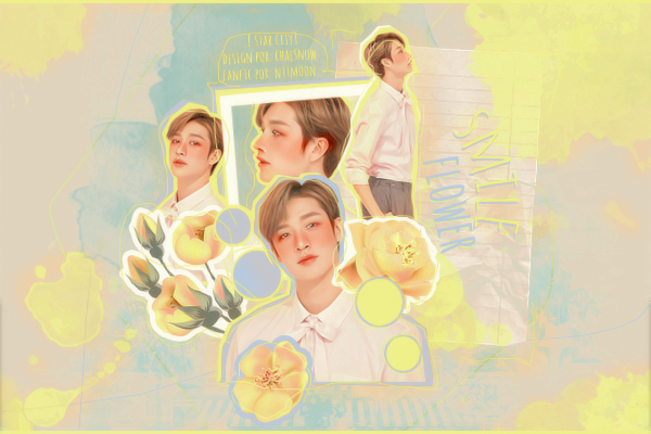 Fanfic / Fanfiction Smile Flower (One-shot - Bang Chan)