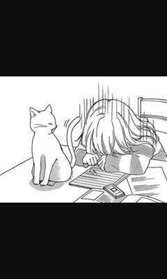 Fanfic / Fanfiction 13 Roka - Capítulo 5 - Sr.katsuke