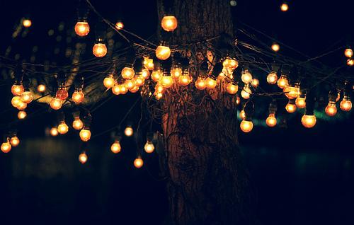 Fanfic / Fanfiction A Bailarina e o Nerd - Capítulo 3 - Árvore dos Sonhos
