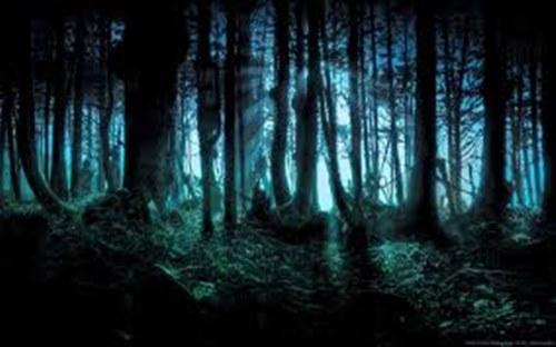 Fanfic / Fanfiction A Bruxa de Huntedport - Capítulo 2 - Conhecendo Carrie