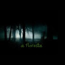 Fanfic / Fanfiction A Floresta - Capítulo 9 - Amiga da Onça