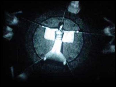 Fanfic / Fanfiction Fatal Frame: A Maldição de Kiri - Capítulo 1 - Capítulo 1: O Ritual
