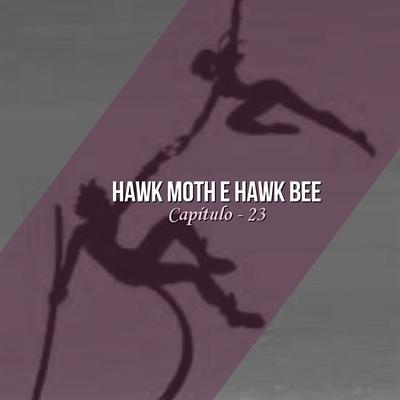 Fanfic / Fanfiction Amor sobre uma simples máscara - Capítulo 23 - Hawk Moth e Hawk bee