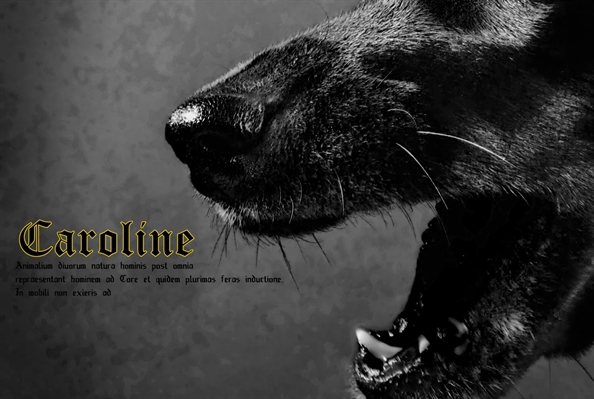 Fanfic / Fanfiction Argo: O tornado Austero. - Capítulo 3 - Caroline