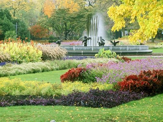 Fanfic / Fanfiction Em um jardim... - Capítulo 1 - Capítulo único