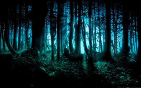 Fanfic / Fanfiction Família creepy pasta - Capítulo 9 - Passado de Nightmary part 2