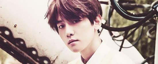 Fanfic / Fanfiction Fisrt Love -> Imagine do Baekhyun do Exo <-| - Capítulo 12 - Eu te amo!