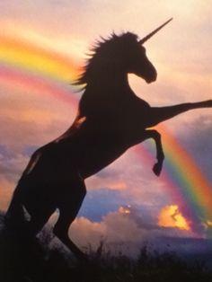 Fanfic / Fanfiction Gravity Falls , Eternity Mystery - Capítulo 12 - Unicorns
