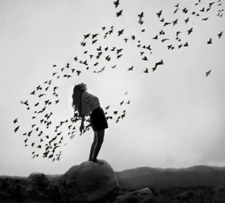 Fanfic / Fanfiction Help - Capítulo 32 - Birds