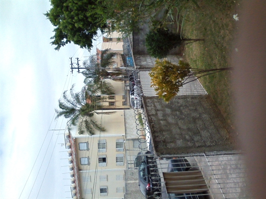 Fanfic / Fanfiction Histórias da minha antiga casa - Capítulo 7 - Episódio 7 - Lá na Terra Tropical