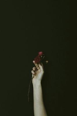 Fanfic / Fanfiction Start A Love - Capítulo 3 - Mudando um pouco a rotina