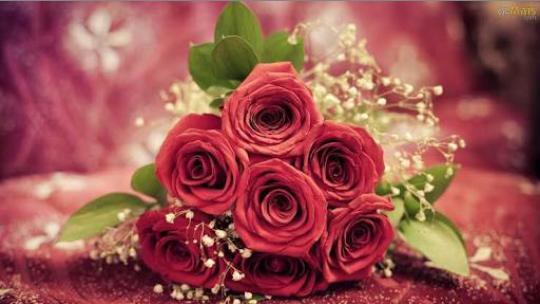 Fanfic / Fanfiction Um amor por acaso - Capítulo 35 - Flores e Nutella
