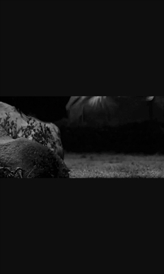 Fanfic / Fanfiction Um verdadeiro piscicopa - Capítulo 2 - Acidente