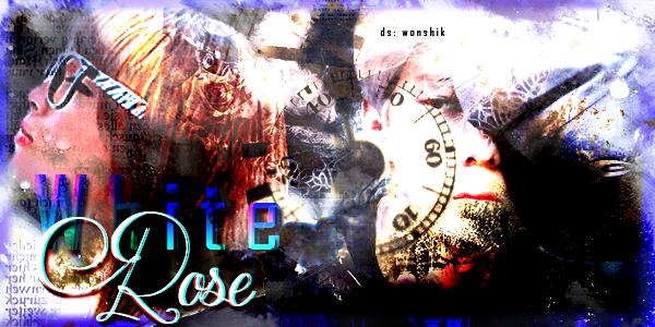 Fanfic / Fanfiction Virtual Love. (Imagine Park Chanyeol) - Capítulo 17 - White Rose.
