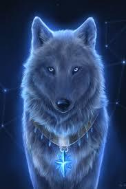 Fanfic / Fanfiction A alma de um Lobo - Capítulo 1 - No colégio