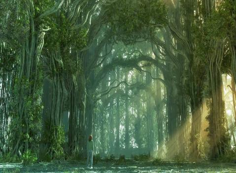 Fanfic / Fanfiction A Floresta - Capítulo 1 - A chegada na floresta