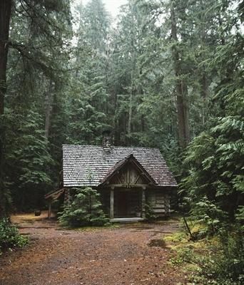 Fanfic / Fanfiction A floresta assombrada - Capítulo 1 - Acampamento