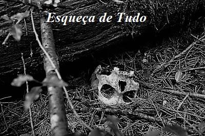 Fanfic / Fanfiction 3 - A Floresta do Medo - Capítulo 2 - Esqueça de Tudo