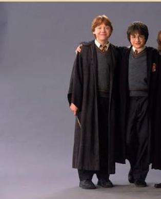 Fanfic / Fanfiction A irmã de Harry Potter - Capítulo 3 - A Revelação
