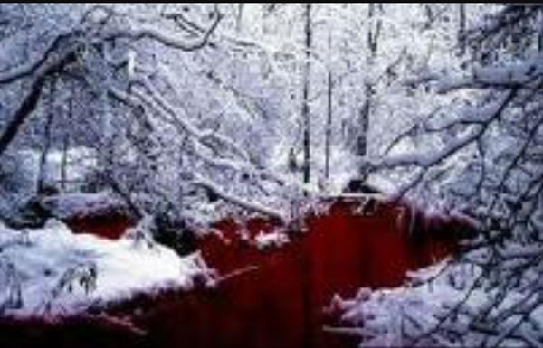 Fanfic / Fanfiction Bruxas com sede de sangue - Capítulo 1 - True me