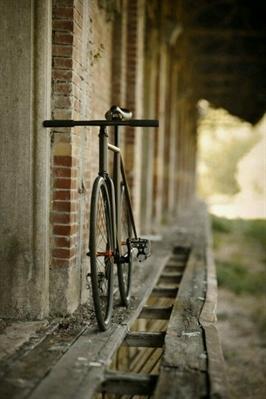 Fanfic / Fanfiction Eu e Você - Capítulo 4 - Bicicleta e um dia muito ruin