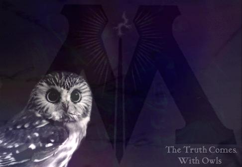 Fanfic / Fanfiction Haunted: Uma escolha pode mudar tudo - Capítulo 10 - The truth comes with Owls